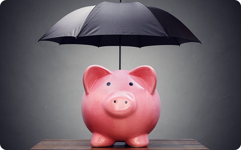 income protection pig
